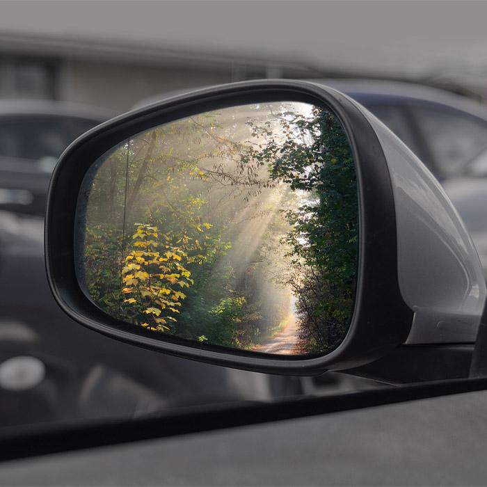 Autorückspiegel mit Waldweg