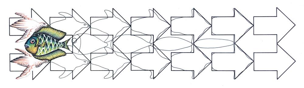 Fisch-Vogel Metamorphose Skizze