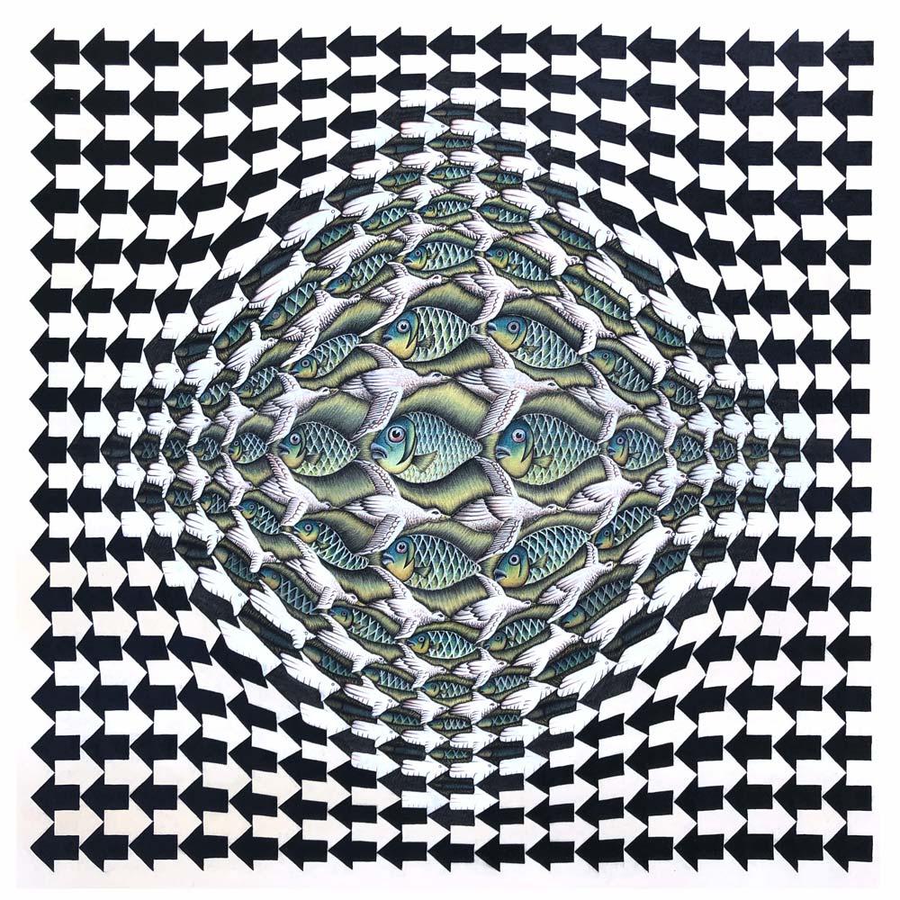 Fisch-Vogel Metamorphose mit Aufblähung