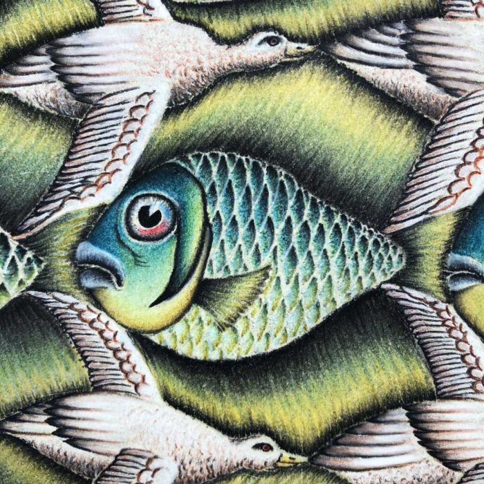 Fisch-Vogel-Grafik
